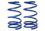 Roush 2005-2014 Mustang Front Coil Springs