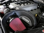 Roush 2015-2017 Mustang 5.0L Cold Air Intake Kit