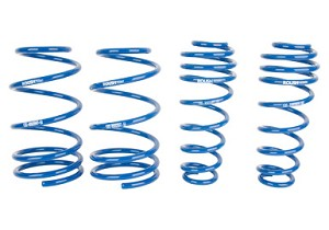 "Roush 2005-2014 Mustang 1"" Lowering Springs"