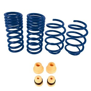 Ford Racing 2015-2019 Mustang GT Coupe Track Lowering Springs